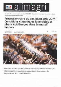 Chenille_process2018-2019 (905x1280)