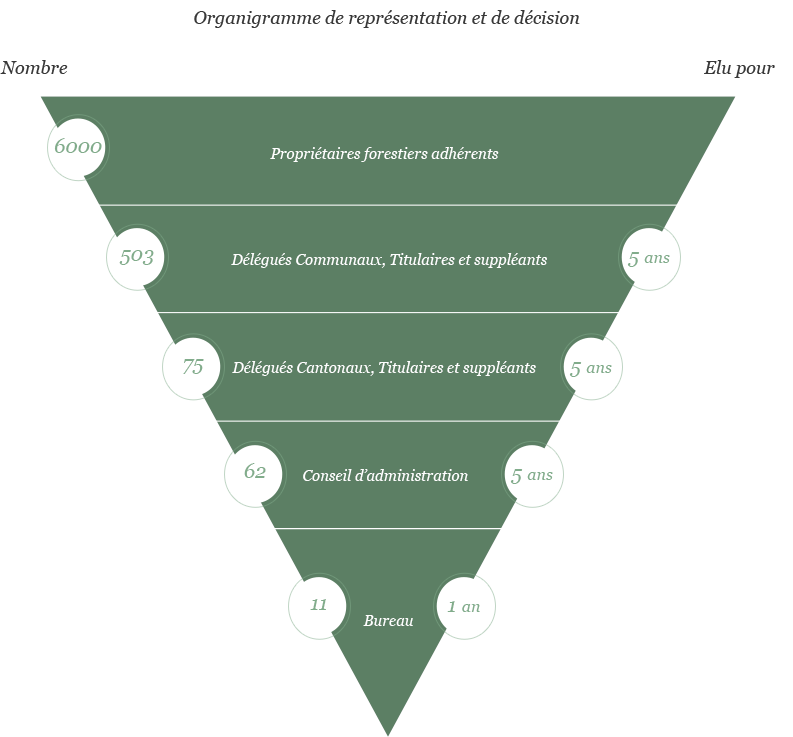 Organigramme de représentation et de décision