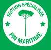 LOGO SECTION SPECIALISEE